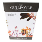 The Guilfoyle, Evolve Development
