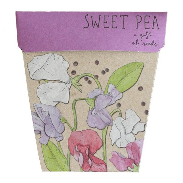 Sweet Pea Gift of Seeds by Sow 'n Sow