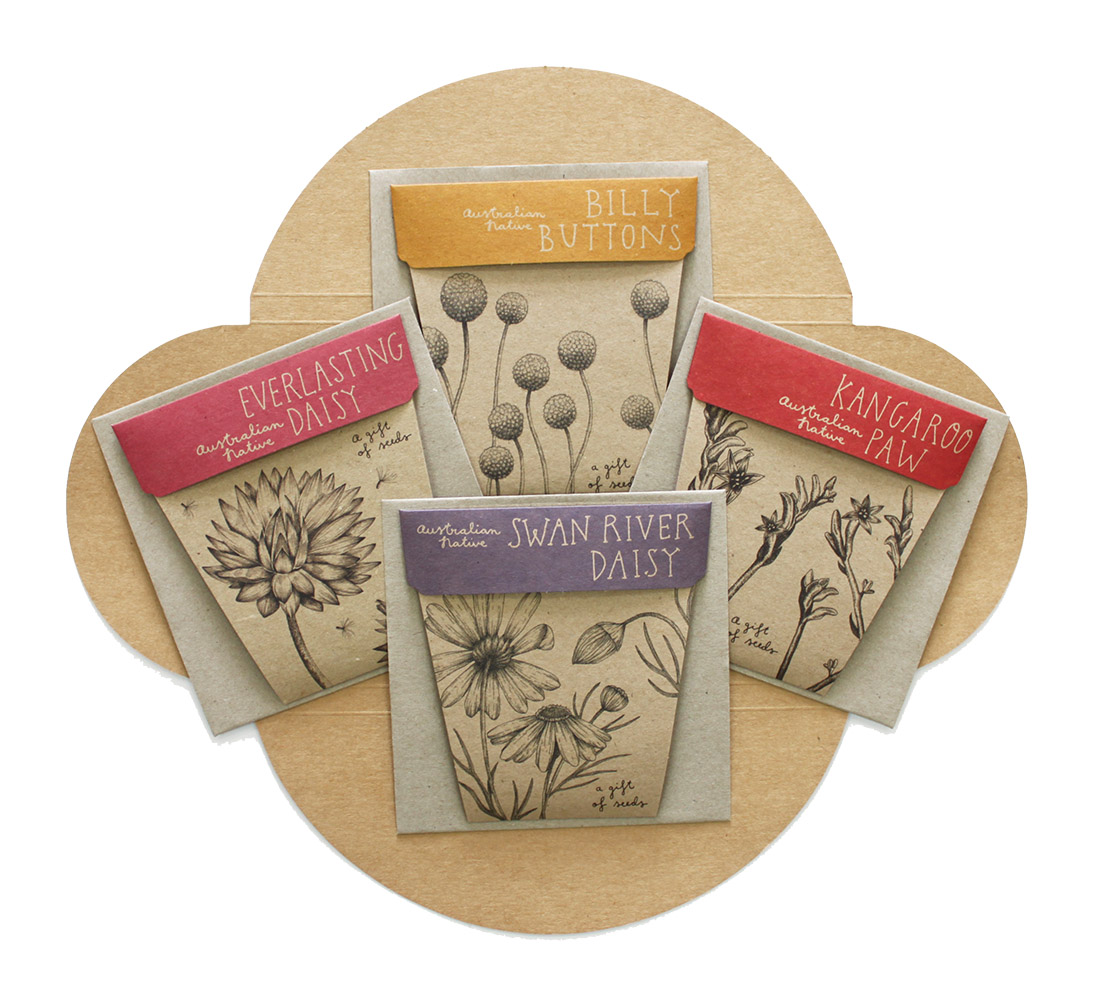 Australian Botanical Seed Gift Box By Sow N Sow