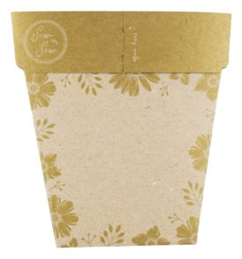 Gold Bonbonniere Gift of Seeds Back