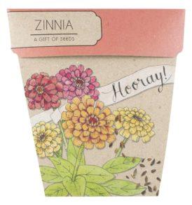 Hooray Zinnia Gift of Seeds Front