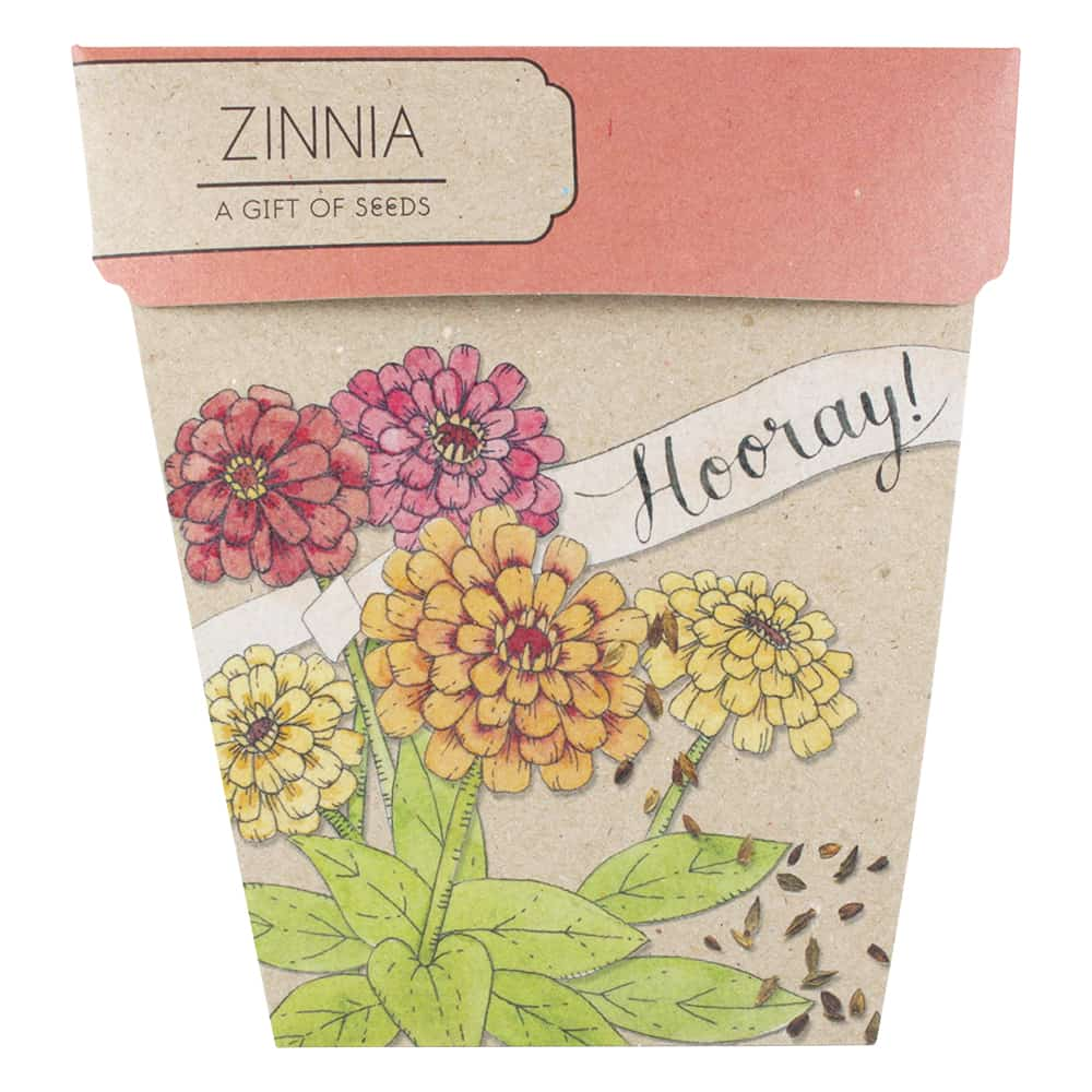 Hooray Zinnia Gift of Seeds Front