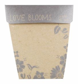 Silver Bonbonniere Gift of Seeds Front