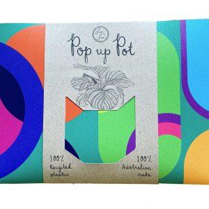 Plant Party Pop Up Pot