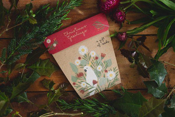 Christmas Gift of Seeds