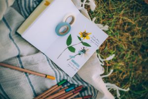 15 pressed flower crafts and activities for kids - pressed flower nature journal