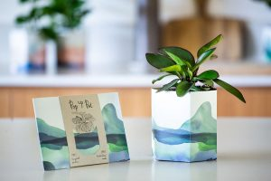 5 thoughtful, sustainable and affordable Mother's Day gifts