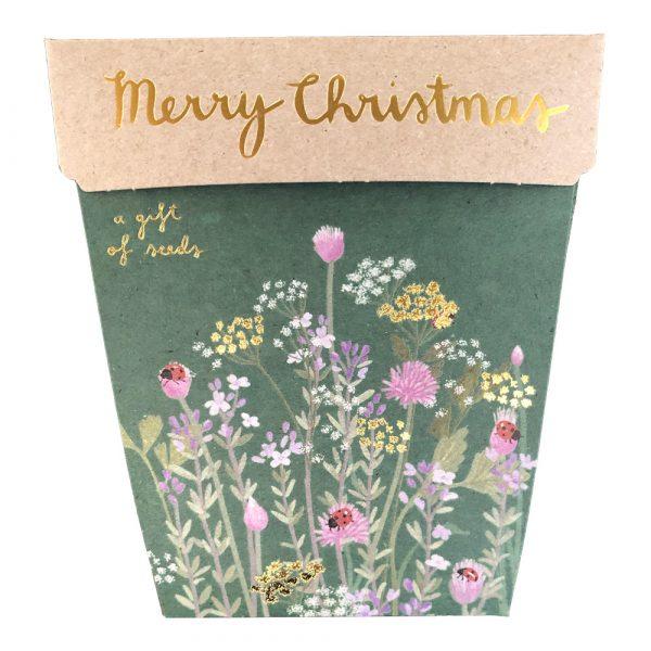 Christmas Herbs Gift of Seeds