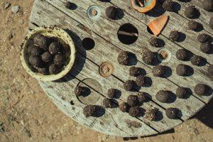 How to make seed bombs