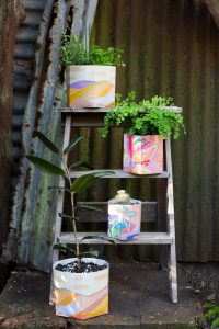 Sow 'n Sow X Jackie Anderson Pop Up Pots artist collaboration