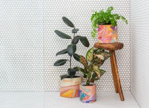 Jackie Anderson artist Pop Up Pots collection