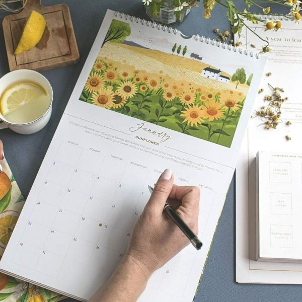 Get organised for the new year with this cool seed calendar